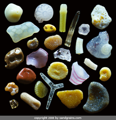 Maui Pieces #2 by Dr. Gary Greenberg, photo links to source