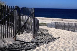 provincetown ma sand