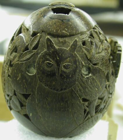 M8862-owl