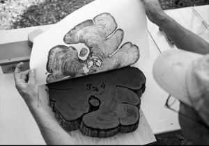 Using a tree cookie as a pattern: like woodblock, but less carving required! Click for source.