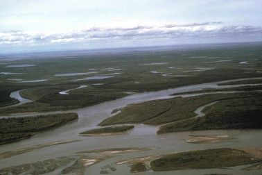 River tributaries, courtesy of the US Fish and Wildlife Service (public domain)