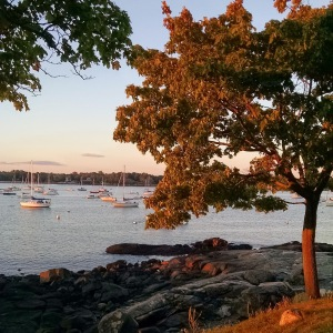 Salem Willows at Sunset, September 2014.  Photo by Meg Winikates