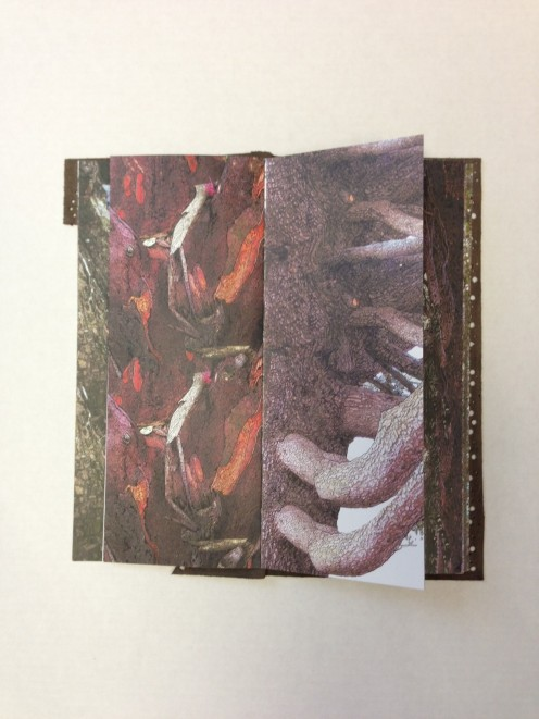 Book of bark drawings by Sallie Lowenstein, featured artist in Branching Out, Trees as Art