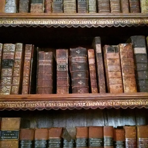 From the library at the Crane Estate, Ipswich. Photo by Meg Winikates, 2015.